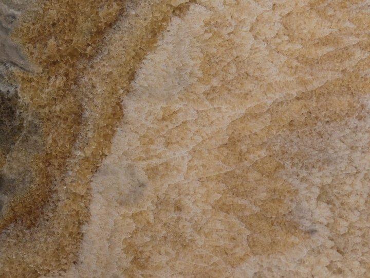 material-ocr-ocr_cam_1.jpg